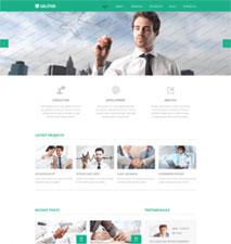 طراحی سایت شرکتی در پونیشا