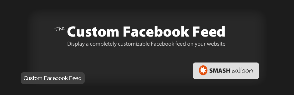 افزونه Custom Facebook Feed