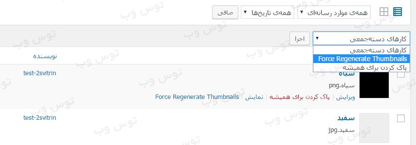 افزونه Force Regenerate Thumbnails