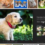 علت حذف گزینه View Image در جستجوی تصویری گوگل و راه بازگشت آن