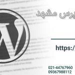 طراح قالب وردپرس در مشهد